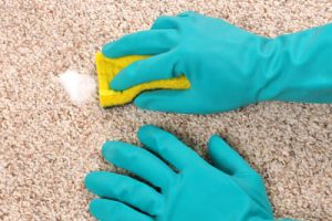 Parker Carpet Cleaning Experts